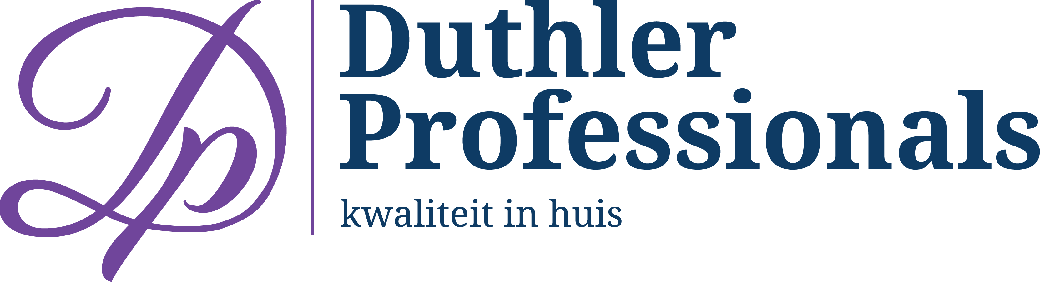 Website Duthler Professionals